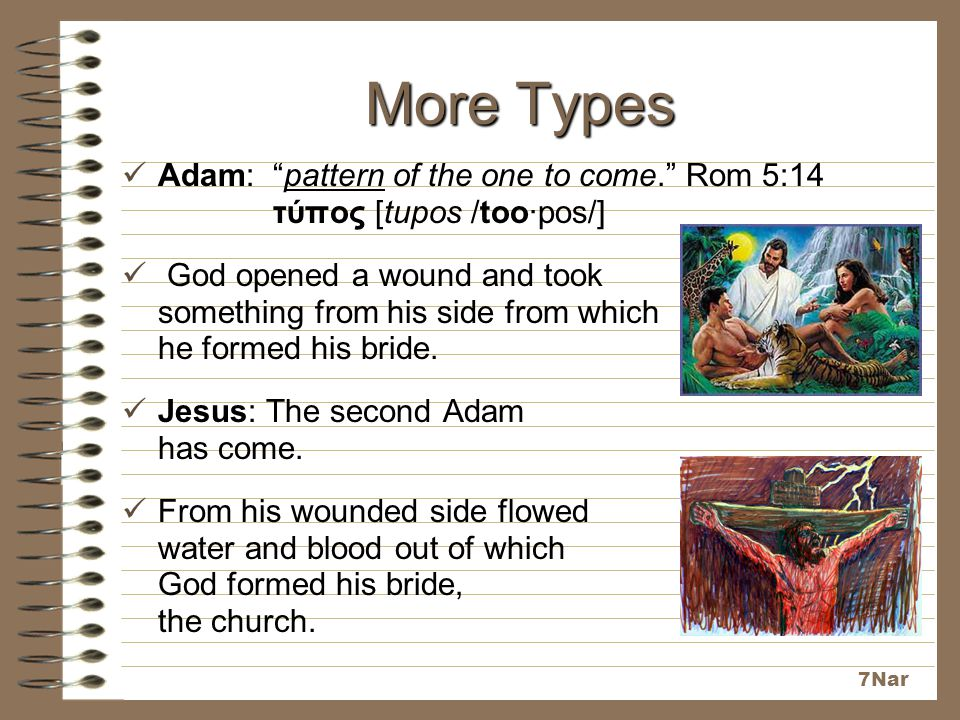 More Types Adam: pattern of the one to come. Rom 5:14 τύπος [tupos /too·pos/]